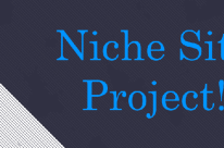How to Build a Niche Site With a Blog