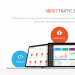 trafficbroker review